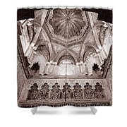 Spain Cathedral 1 Shower Curtain