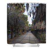 Spanish Moss Sidewalk Shower Curtain