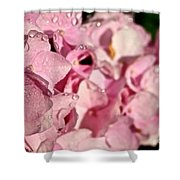 Sparkling Spring Shower Curtain