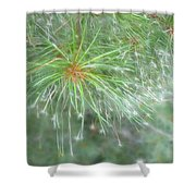 Sparkly Pine Shower Curtain