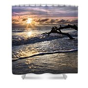Sparkly Water At Driftwood Beach Shower Curtain