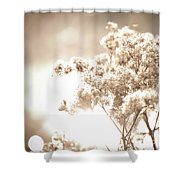 Sparkly Weeds In Sepia Shower Curtain