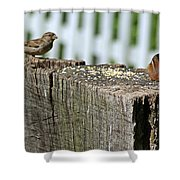 Sparrow And Chipmunk Coexist Shower Curtain