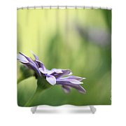 Speak To Me - Digital Painting Shower Curtain