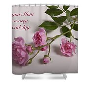 Special Day Shower Curtain