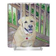 Spencer On Porch Shower Curtain