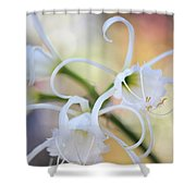 Spider Lily 3 Shower Curtain