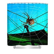 Spider On The Olympic Roof Shower Curtain