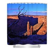 Spider Rock Shower Curtain