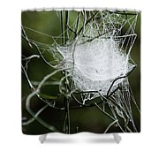 Spider Web Basket Shower Curtain