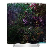 Spider Web In The Magic Forest Shower Curtain