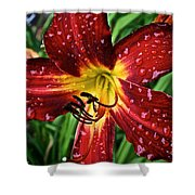Spiderman The Day Lily Shower Curtain