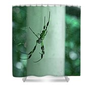Spiders - Mr And Mrs Shower Curtain