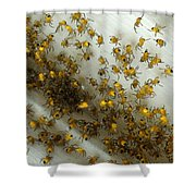 Spiders Spiders Spiders Shower Curtain