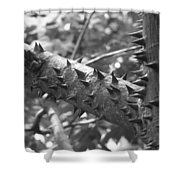 Spiked Limbs Shower Curtain