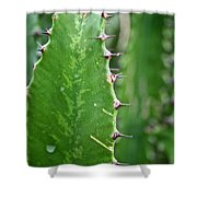 Spines Shower Curtain