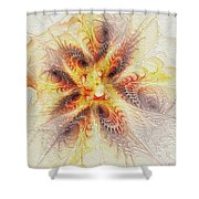 Spiral Collection Shower Curtain