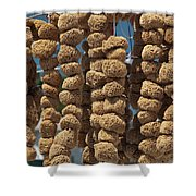 Sponge Docks Shower Curtain