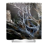 Spotted Owl In Tree Shower Curtain