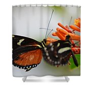 Spotted Tiger Glassywing Shower Curtain