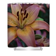 Spotty Lily Shower Curtain