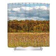 Sprautumn Shower Curtain
