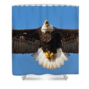 Spread Eagle Shower Curtain