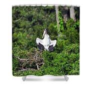 Spread Stork Shower Curtain