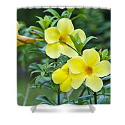Spreading Petals On Tall Stemmed Bright Shower Curtain