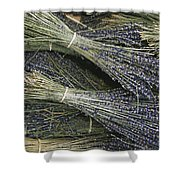 Sprigs Of Lavender, Provence Region Shower Curtain