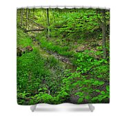 Spring At Cleveland Metro Park Shower Curtain