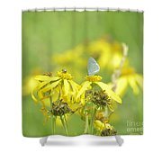 Spring Azure And Friend Shower Curtain