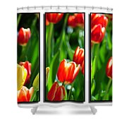 Spring Beauty Triptych Series Shower Curtain