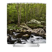 Spring Dogwoods On The Little River - D003829 Shower Curtain