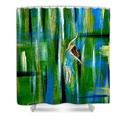 Spring Equinox Shower Curtain