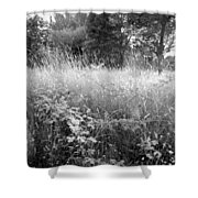 Spring Field Black And White Shower Curtain