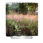 Spring Field Shower Curtain