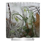 Spring Flowers In Ice Storm Shower Curtain