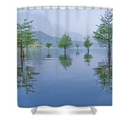 Spring Hanging Garden Shower Curtain