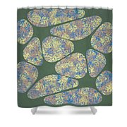 Spring Lips Shower Curtain