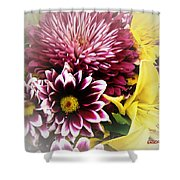 Spring Mix Shower Curtain