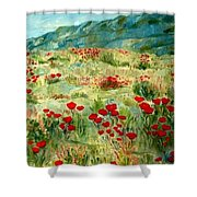 spring near the Dead See Shower Curtain