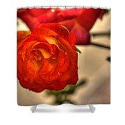 Spring Rose Shower Curtain