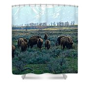 Spring Salad Grazing Shower Curtain