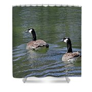 Spring Thaw Water Geese Shower Curtain