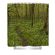 Spring Trail Scene 5 A Shower Curtain