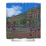Spring Tulips Downtown Georgetown Shower Curtain