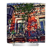 Spring Wall Shower Curtain