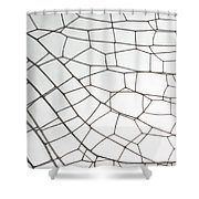 Springtime Darner Dragonfly Wing Shower Curtain
