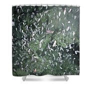 Squat Lobsters At Seamount X Shower Curtain